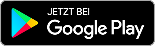 logo-store-google